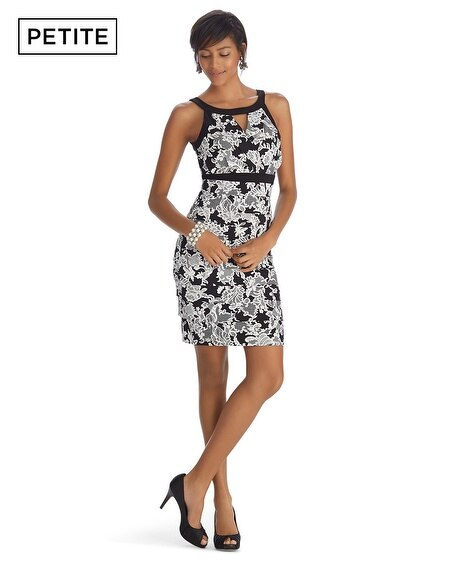Petite Sleeveless Lace Print Instantly Slimming Dress