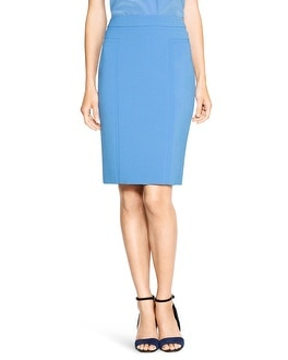 Seamed Pencil Skirt