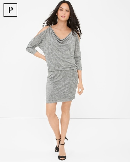 Petite Cold-Shoulder Silver Jersey Dress